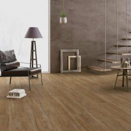 Carrelage sol extérieur effet bois Alpino natural R11 25*100 cm